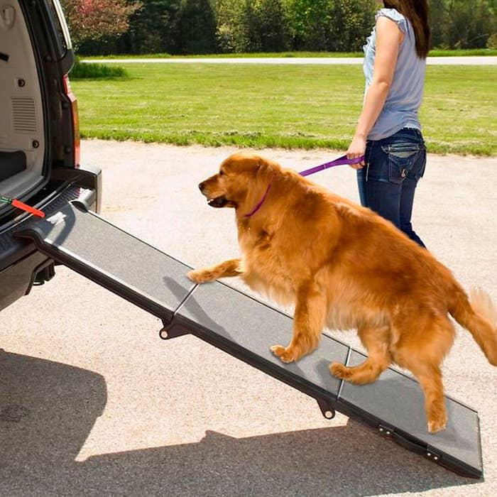 The pet ramp