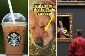 Starbucks drink; sneezing dog; man at museum