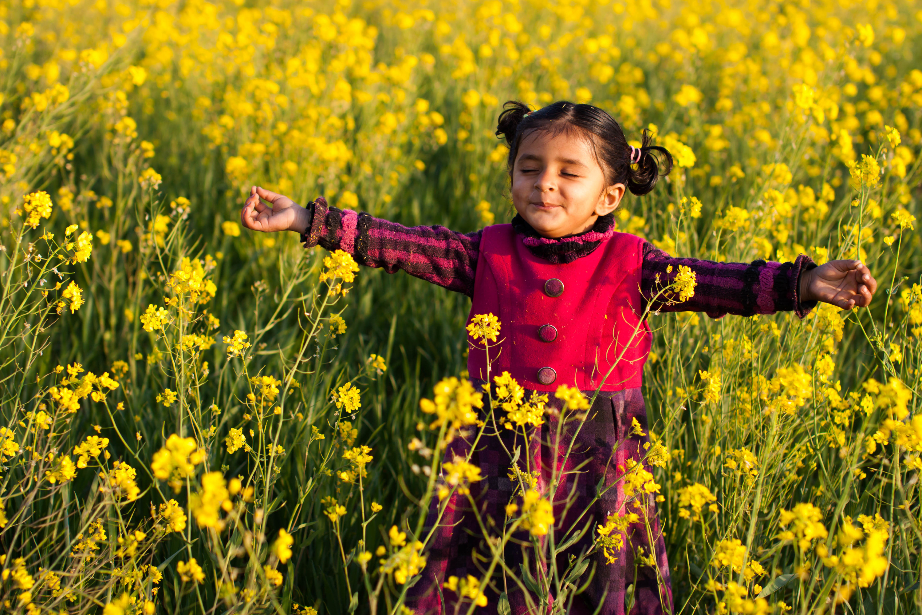 A Pakistani girl extends her arms in a field of flowers