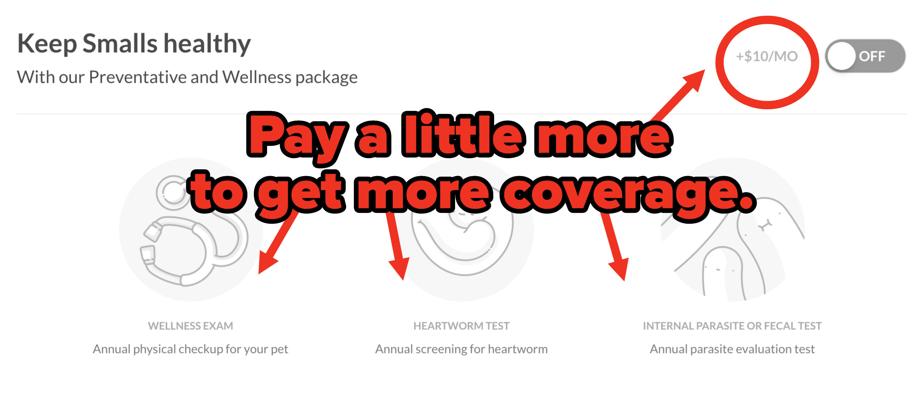 Different tiers of pet insurance coverage on Lemonade
