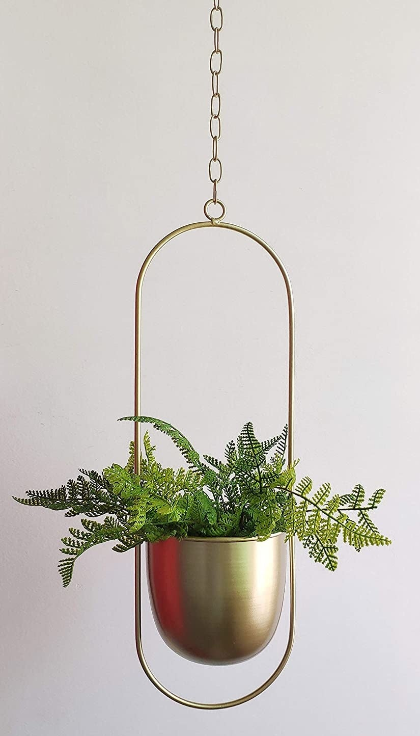 a plant inside of the hanging metal planter