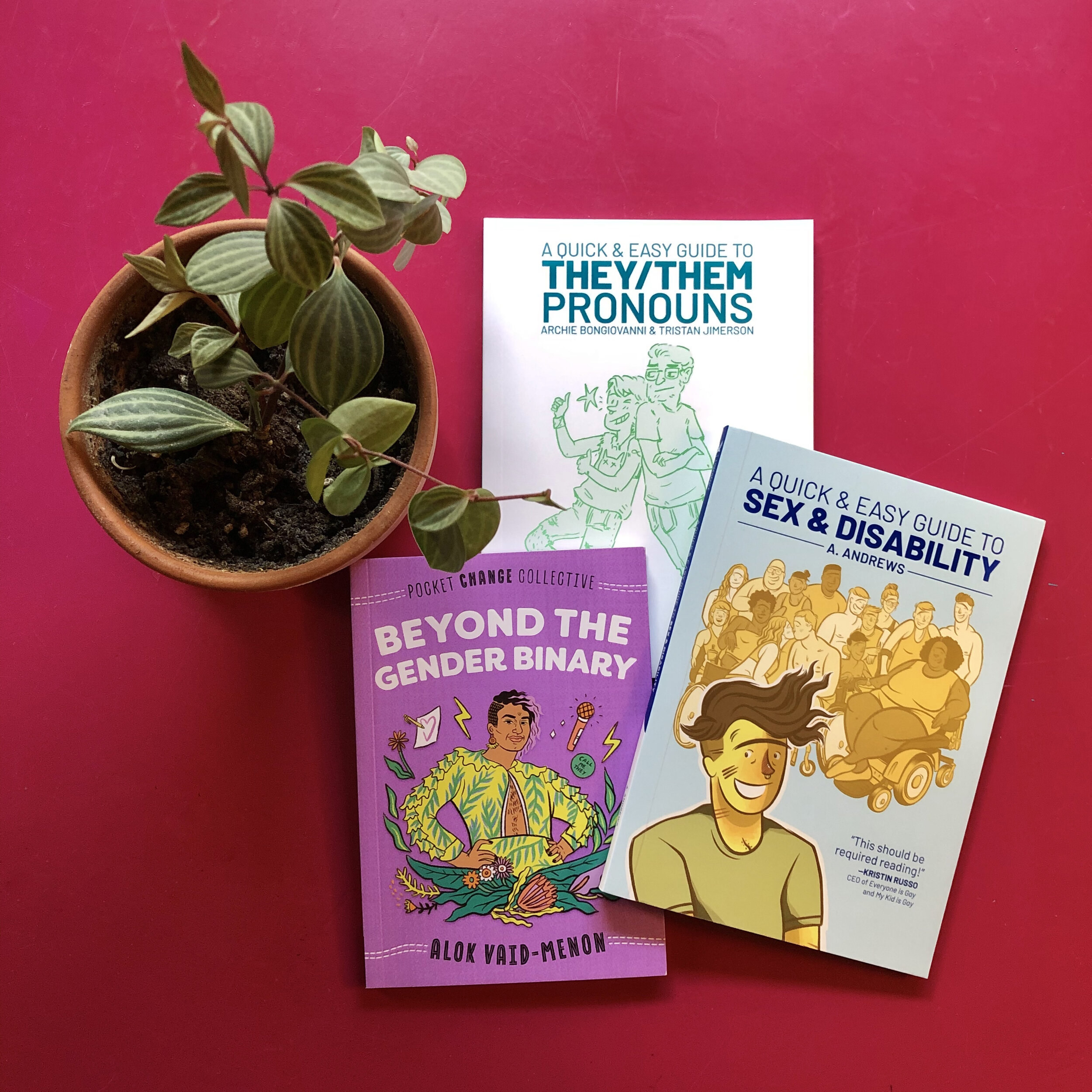 The books and a plant