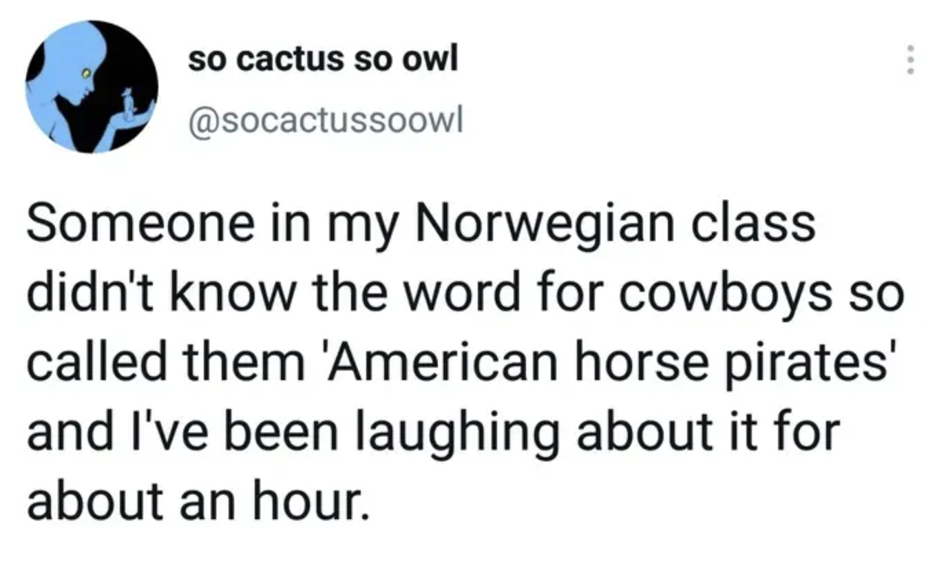 tweet reading someone in my norwegian class didn't know the word for cowboys so called them american horse pirates
