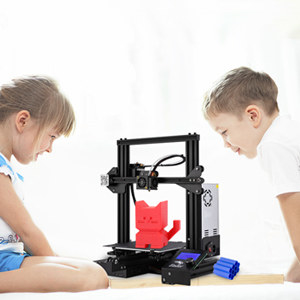 Two kids printing a 3D cat with the machine.