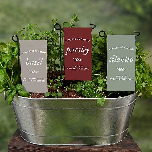 metal plant container with three mini garden flags in it marking the plants and care directions