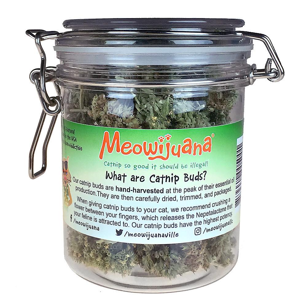 a mason jar full of catnip buds