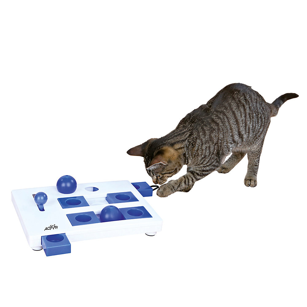 a cat plating with an interactive cat toy