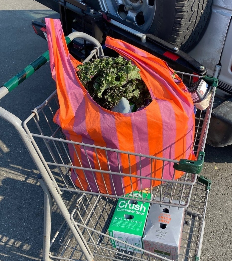 The bag in the top of a shopping cart
