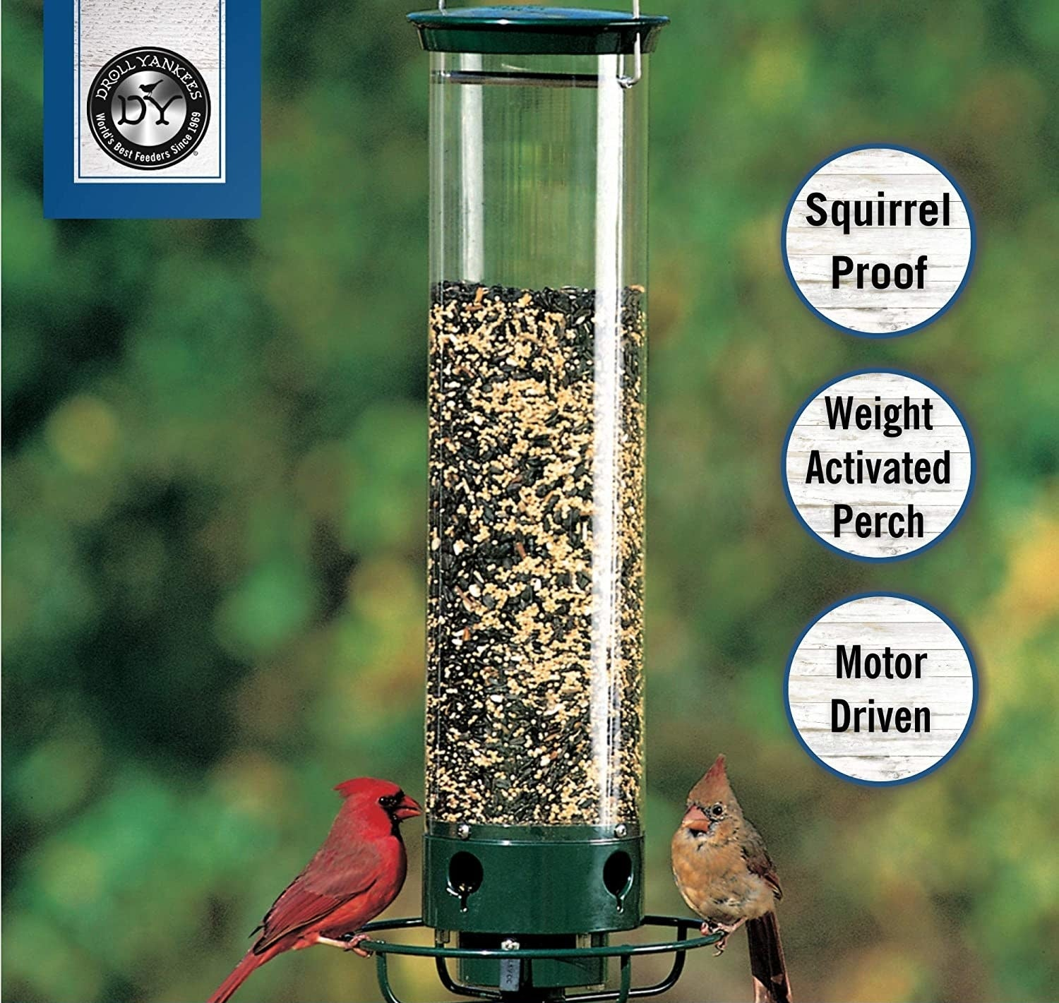 a tube-like bird feeder with a round perch around it