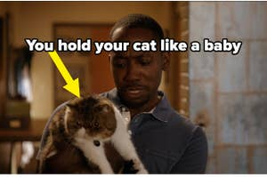 you hold your cat like a baby
