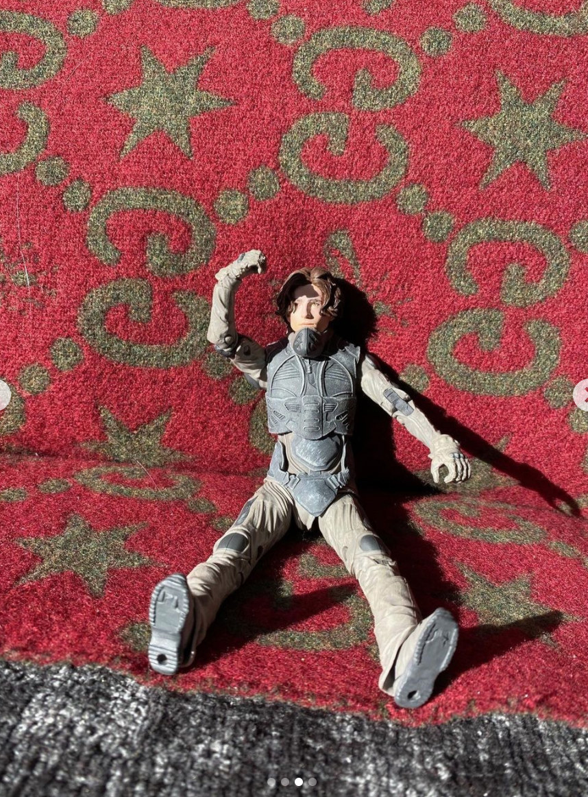Chalamet's action figure sitting on the couch