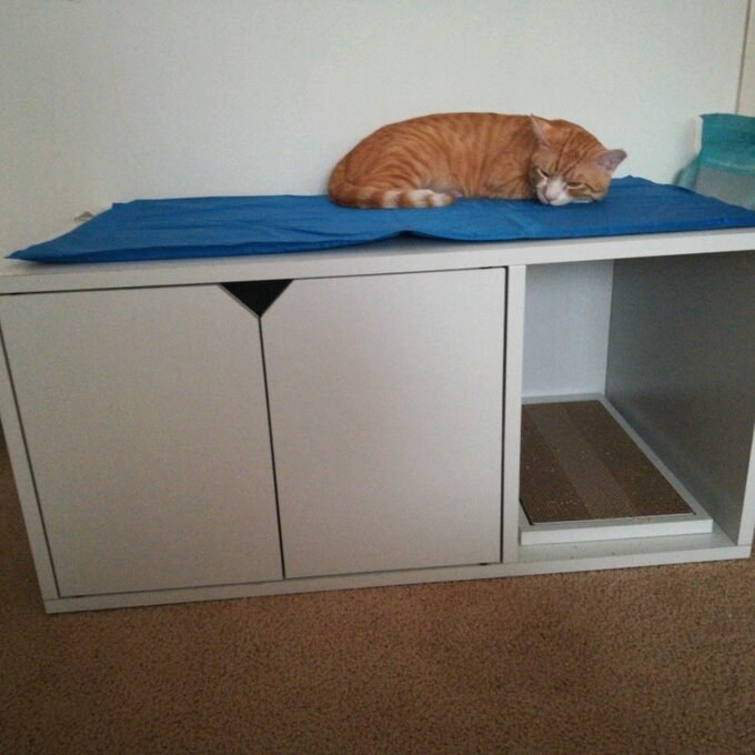 The litter enclosure, which is long and rectangular, with an entrance at one end, and double doors for litter box removal