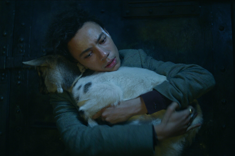 Jesper hugging the goat