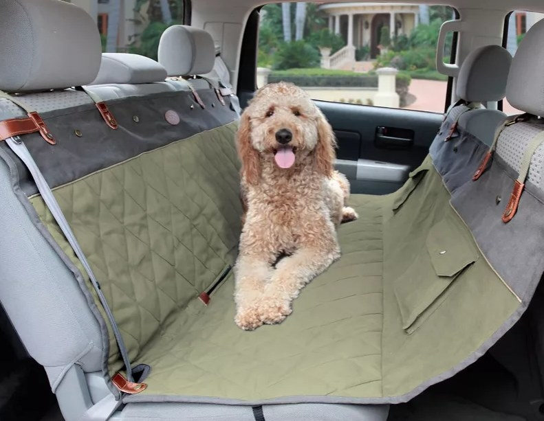 a dog sits on a hammock in the back seat of a car