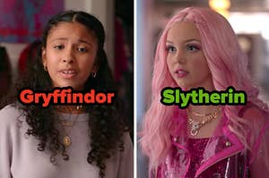 """Julie labeled """"Gryffindor"""" and Carrie labeled """"Slytherin"""""""
