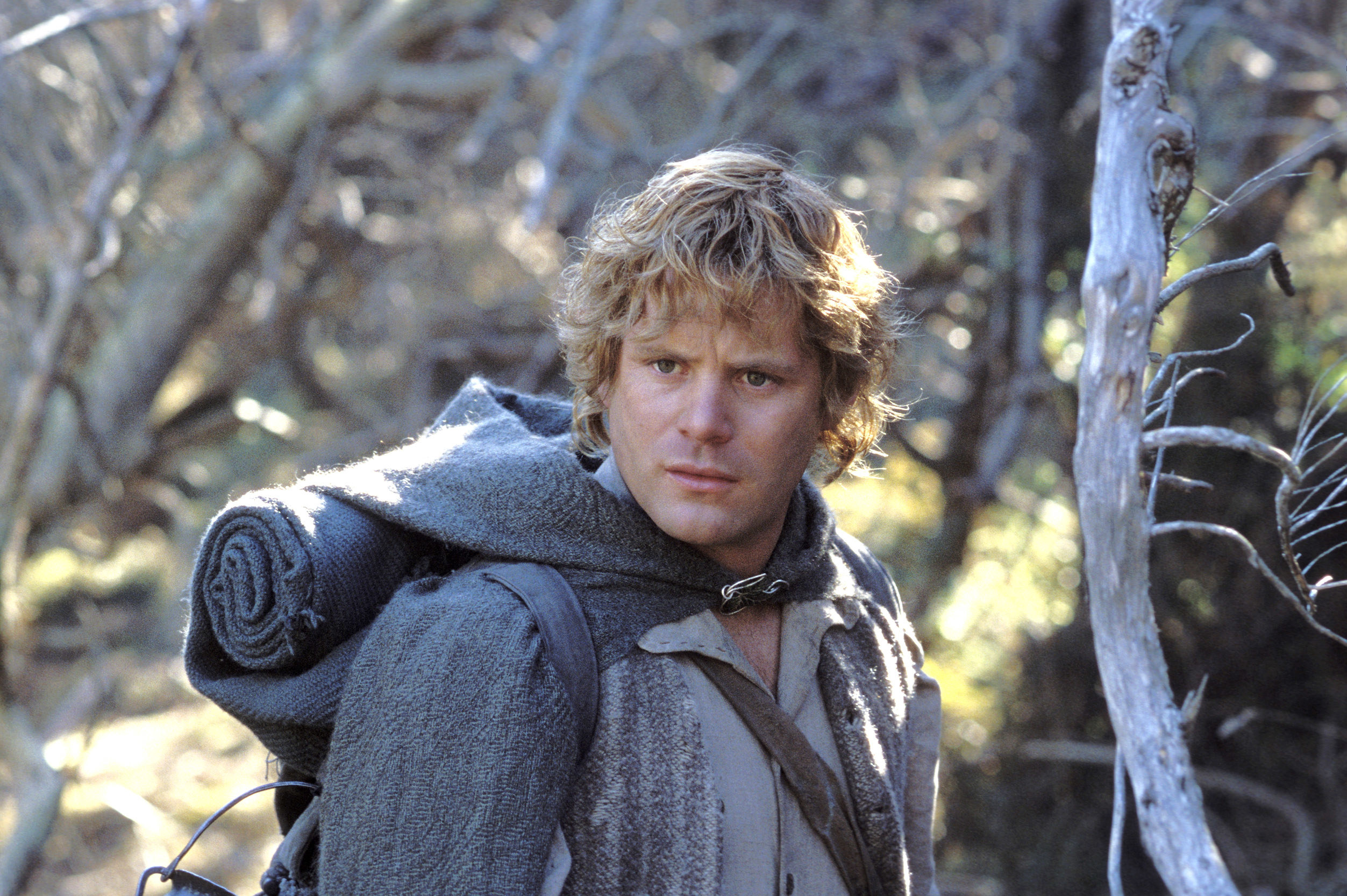 Sam in Lord of the Rings