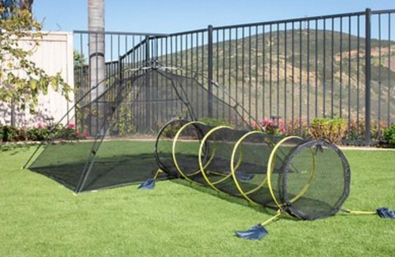 The backyard kitty compound