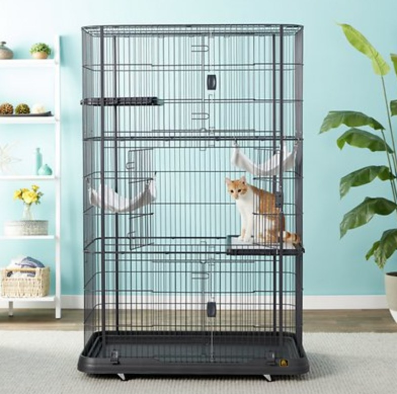 The cat cage