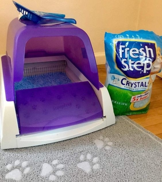 Reviewer's photo of the litter box