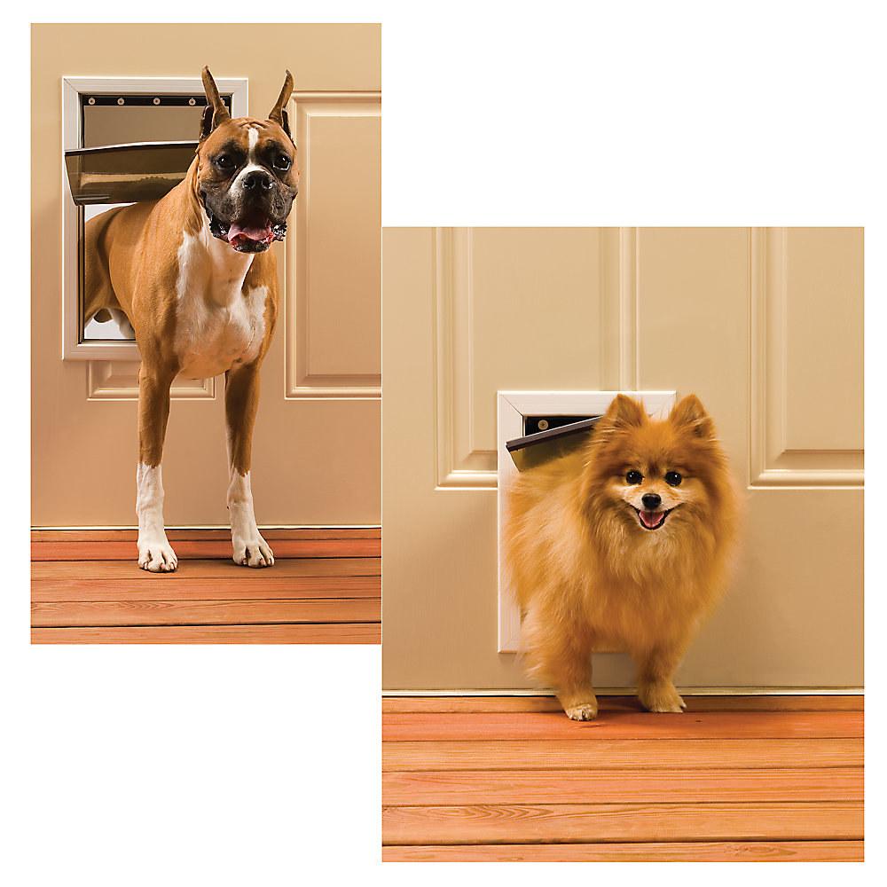 The pet door in action