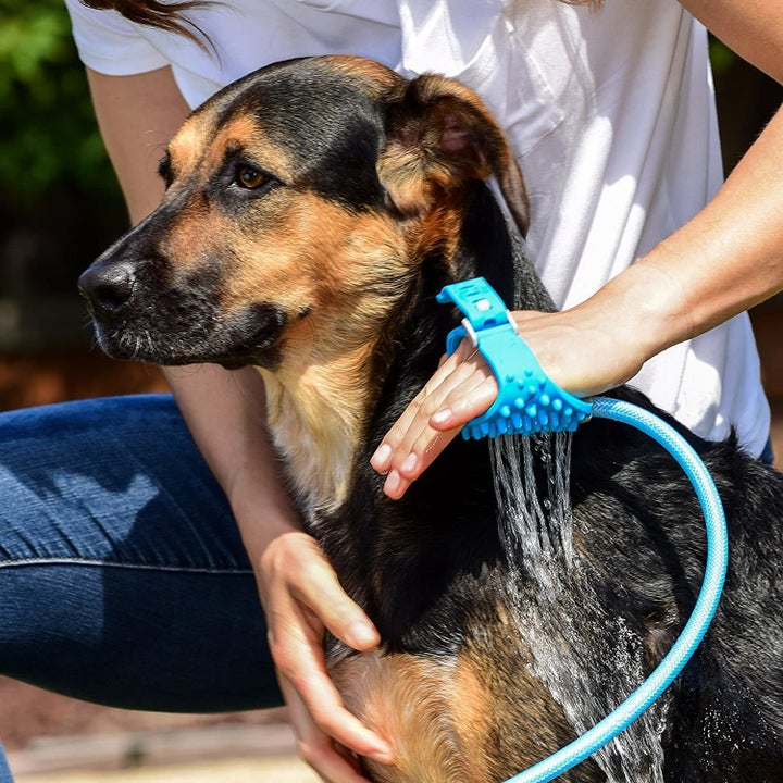 Model using dog shower attachment to bathe dog