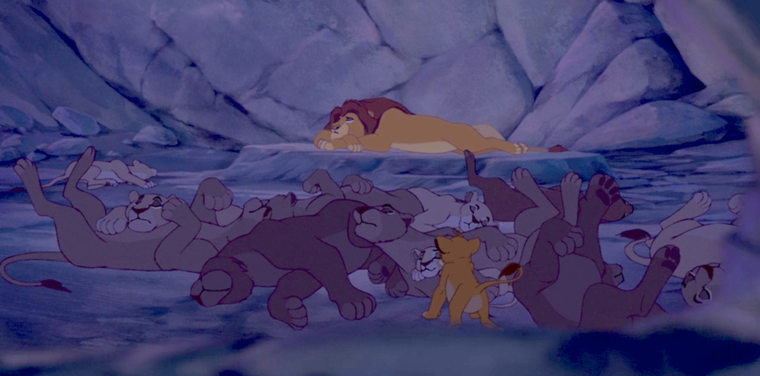 All the lionesses sleeping next to Mufasa
