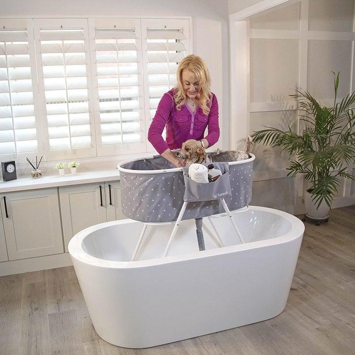 Model washing dog in foldable dog bath