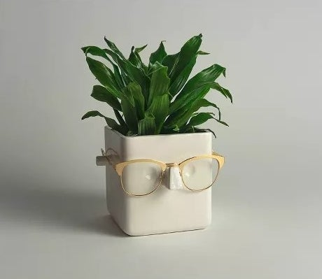 The plant holder wearing a pair of glasses