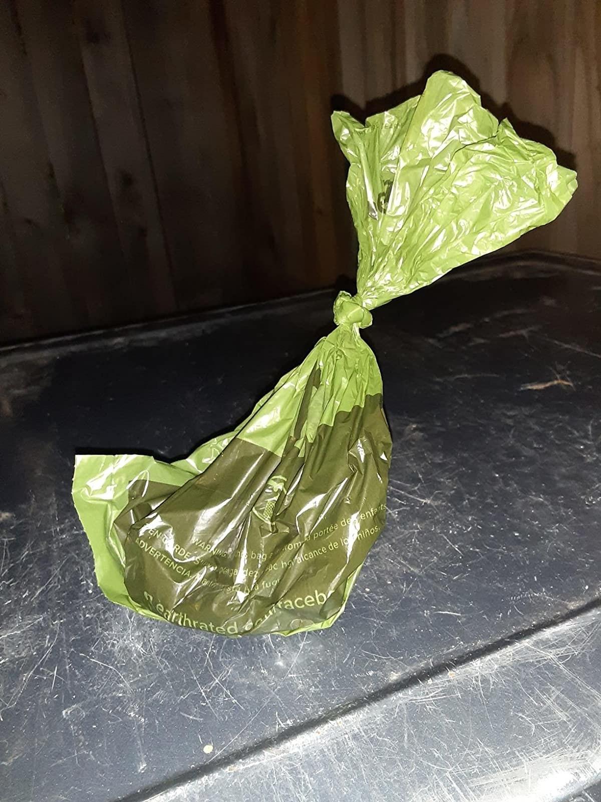 A dog poop bag with poop in it