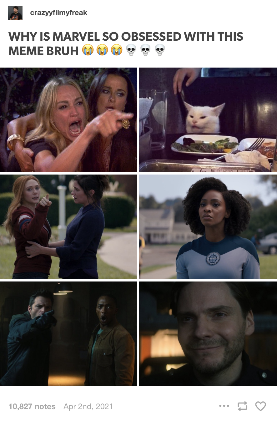 Sam, Bucky, and Zemo, and Wanda, Agatha, and Monica recreating the Angry woman pointing at cat meme in their shows