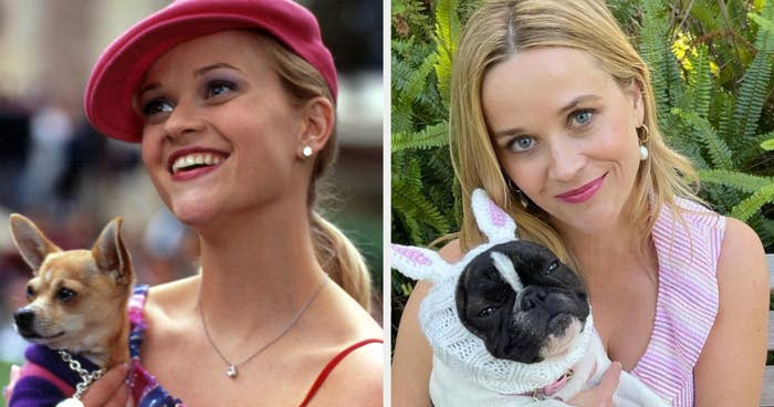 Elle holds her dog on the left and Reese holds her dog, who's wearing a bunny costume, on the right