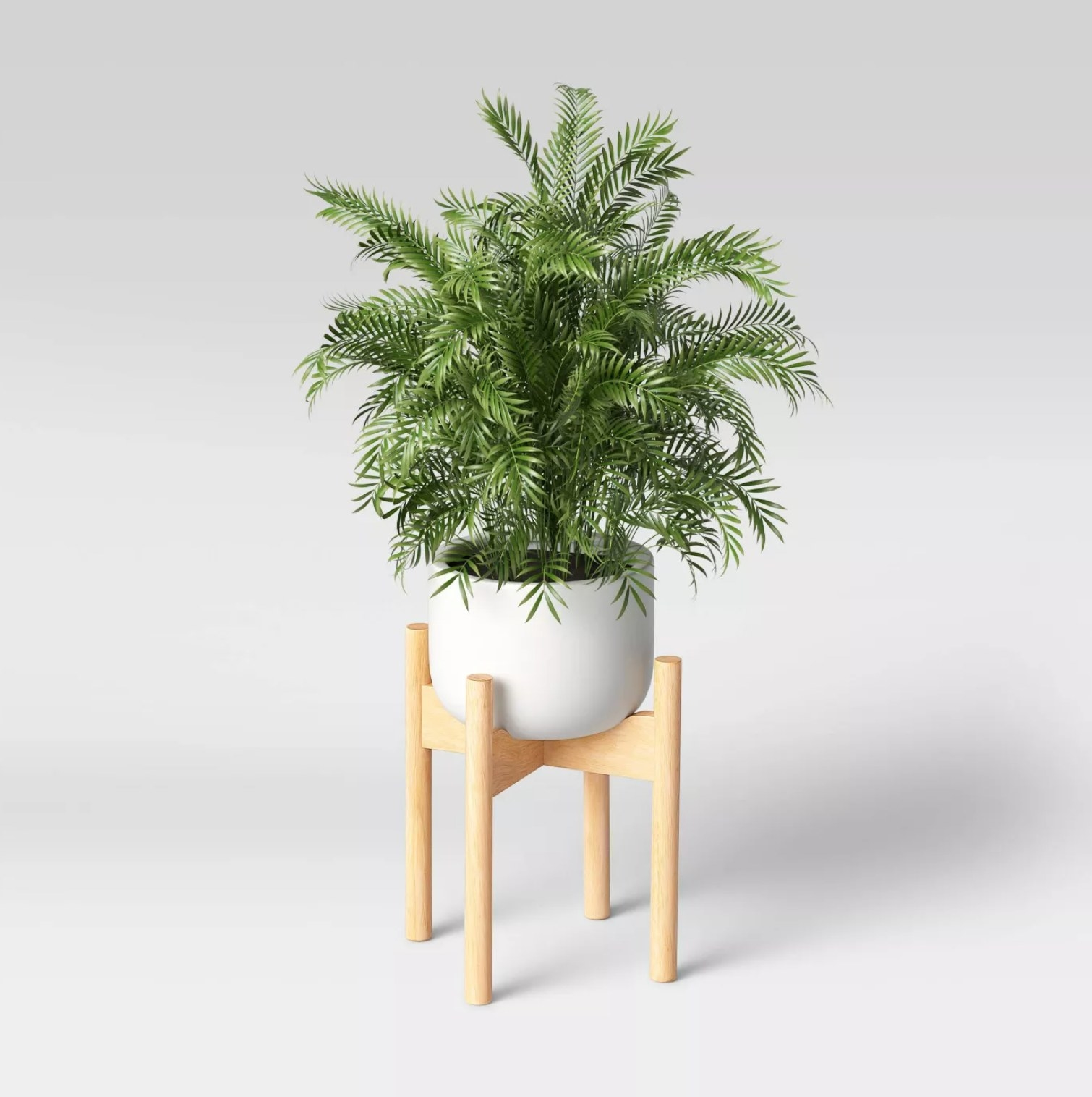 The planter with a plant in it