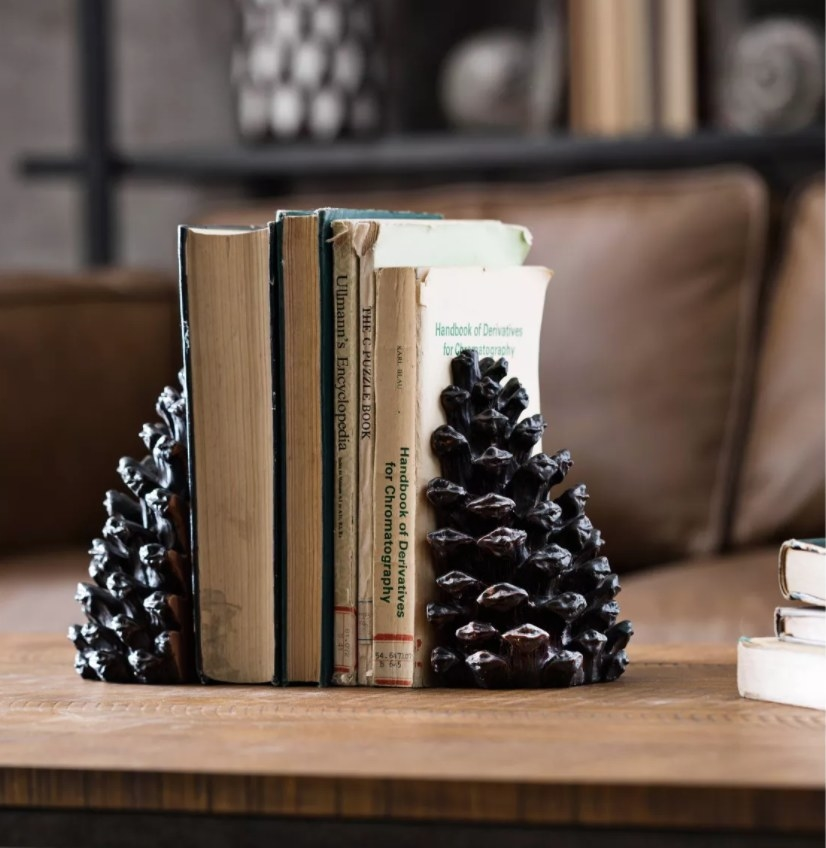 The pinecone book ends holding up a few books