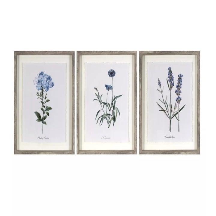 A closeup of the botanical prints
