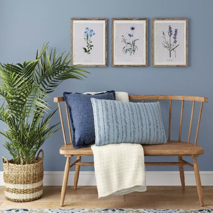 The prints hung up on a wall with a bench and plant in front