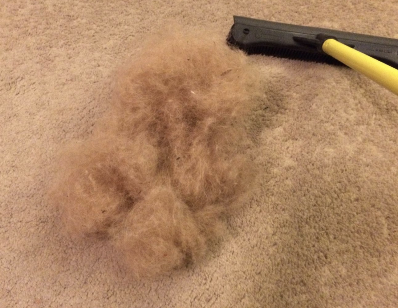 A pile of fur from a carpet next to a pet hair removal broom