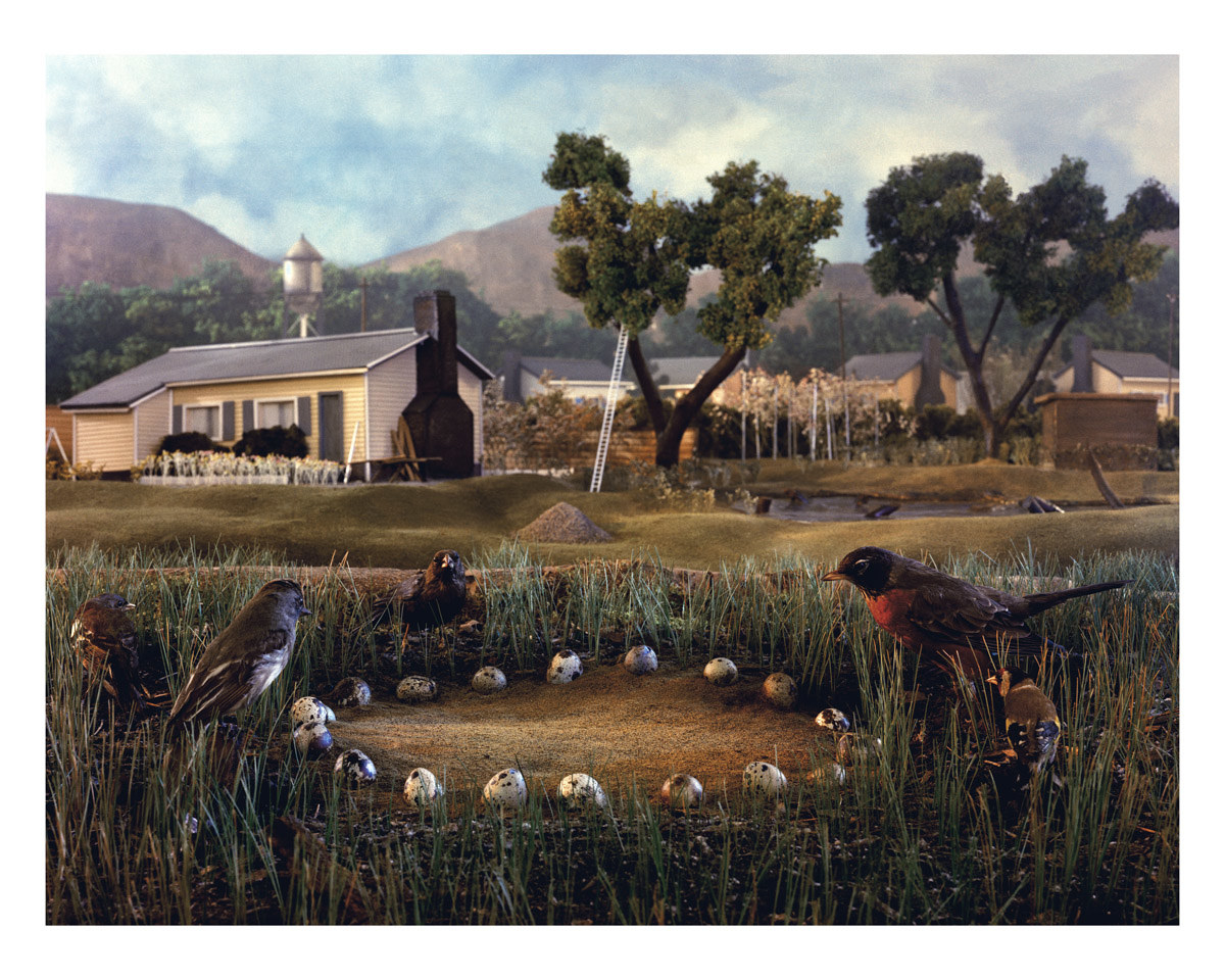 A scene of three robins looking at a ring of eggs, with a farmhouse and farm scene in the background