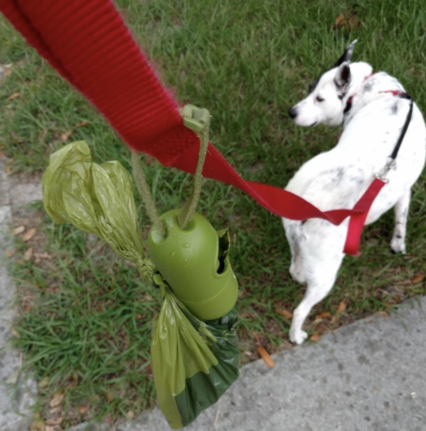 A poop bag dispenser with bags attached to a dog's leash