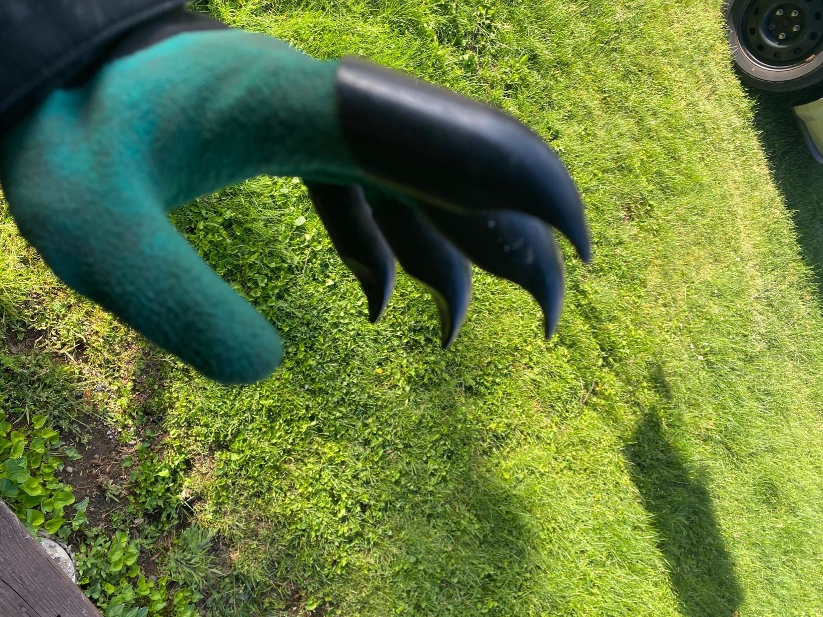 Reviewer using gloves with claws to garden