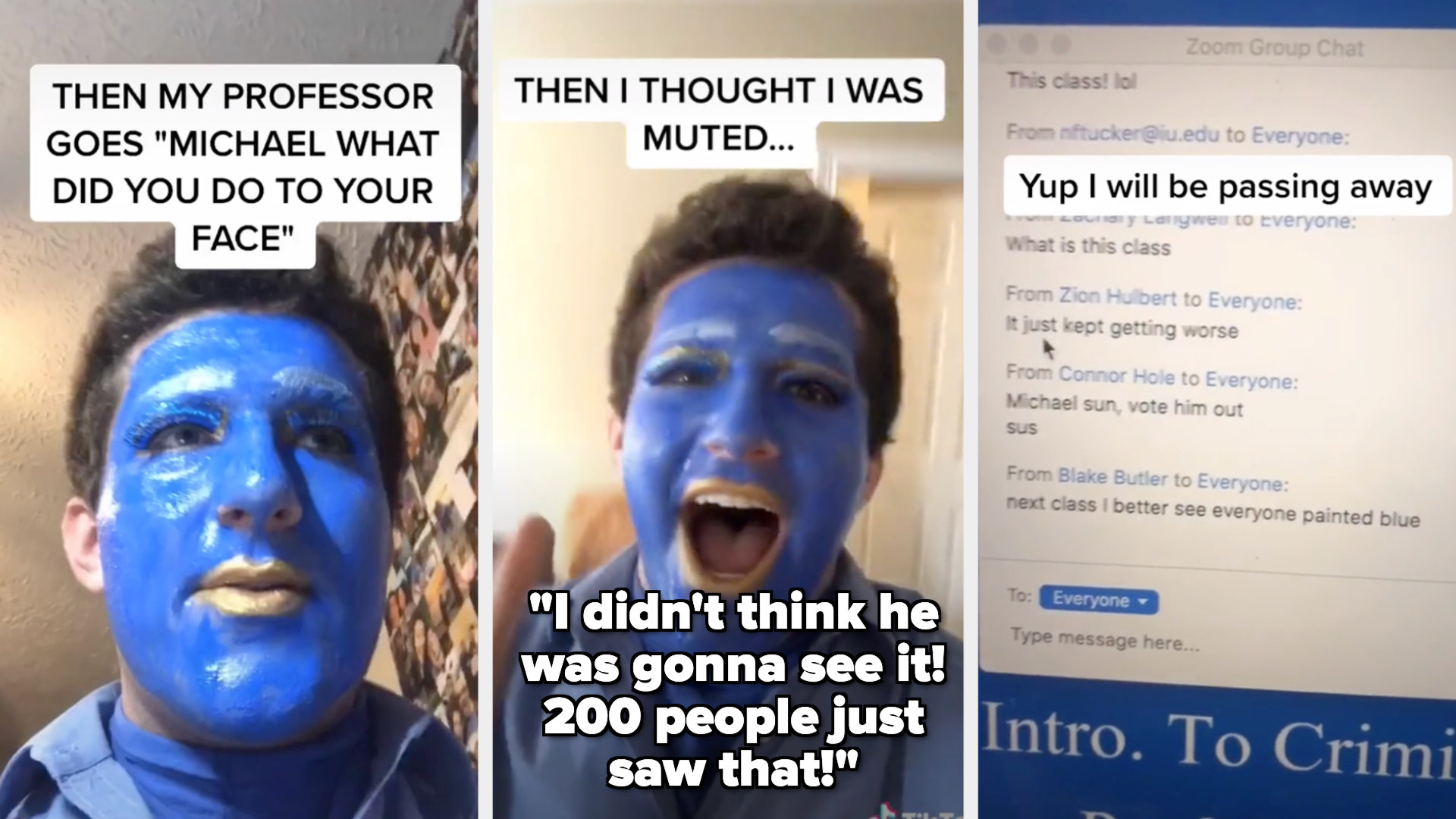 Michael with paint on face saying his professor asked about it, then shouting about how he didn't think he'd be on camera while unmuted, then a picture of people laughing about it in the chat