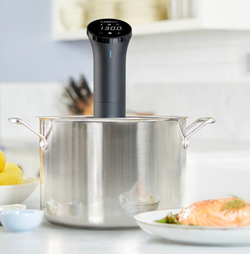 The sous vide precision cooker