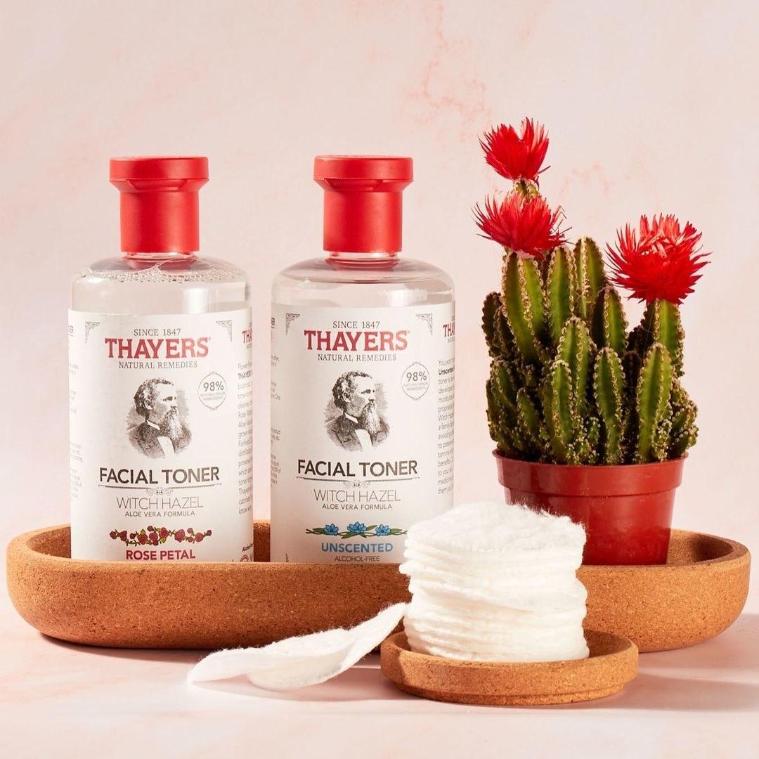 Thayers facial toner next to cactus and cotton pads