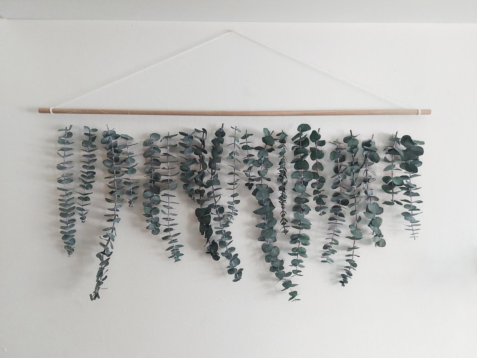 Eucalyptus wall hanging placed on wall
