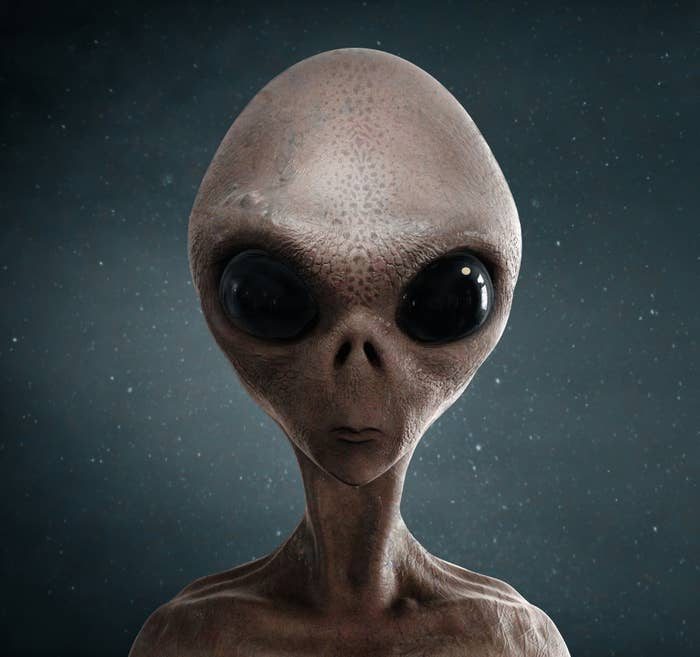 An alien with a very thin body a large head and big eyes
