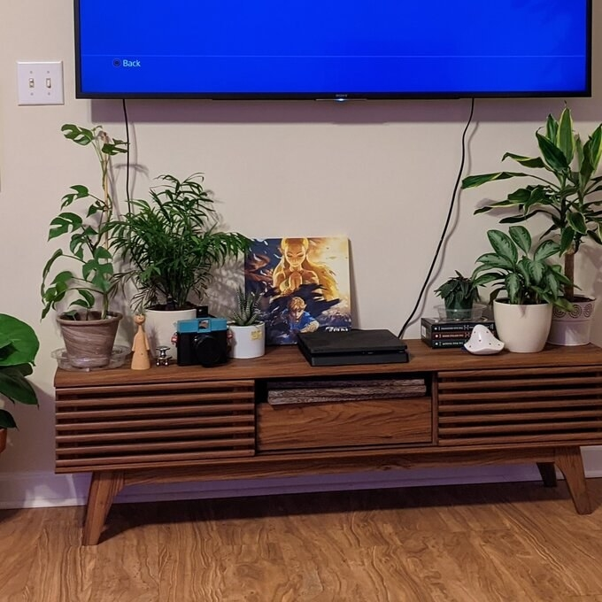 The wooden TV stand