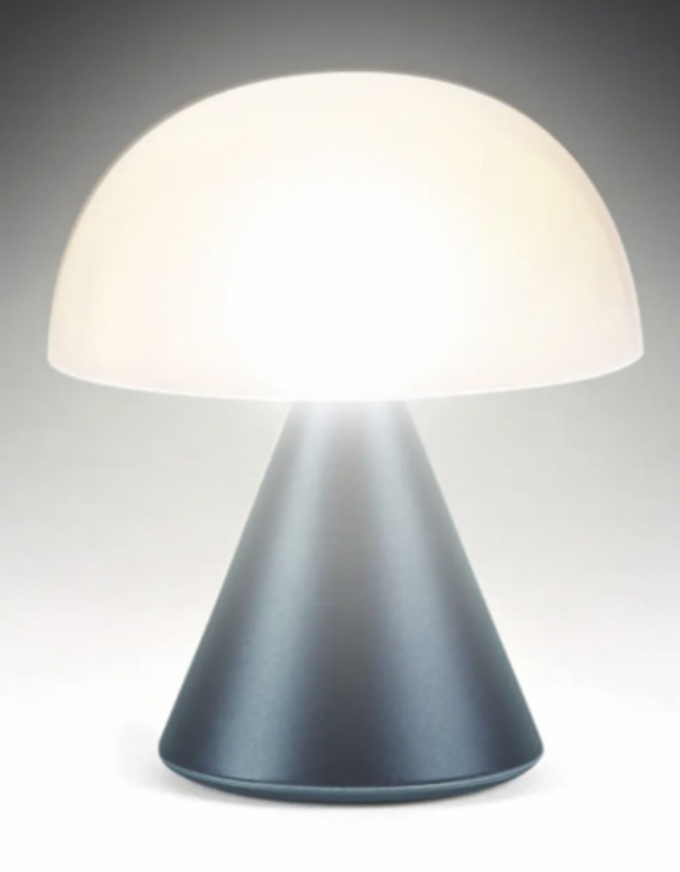a mushroom shaped lamp with a navy base