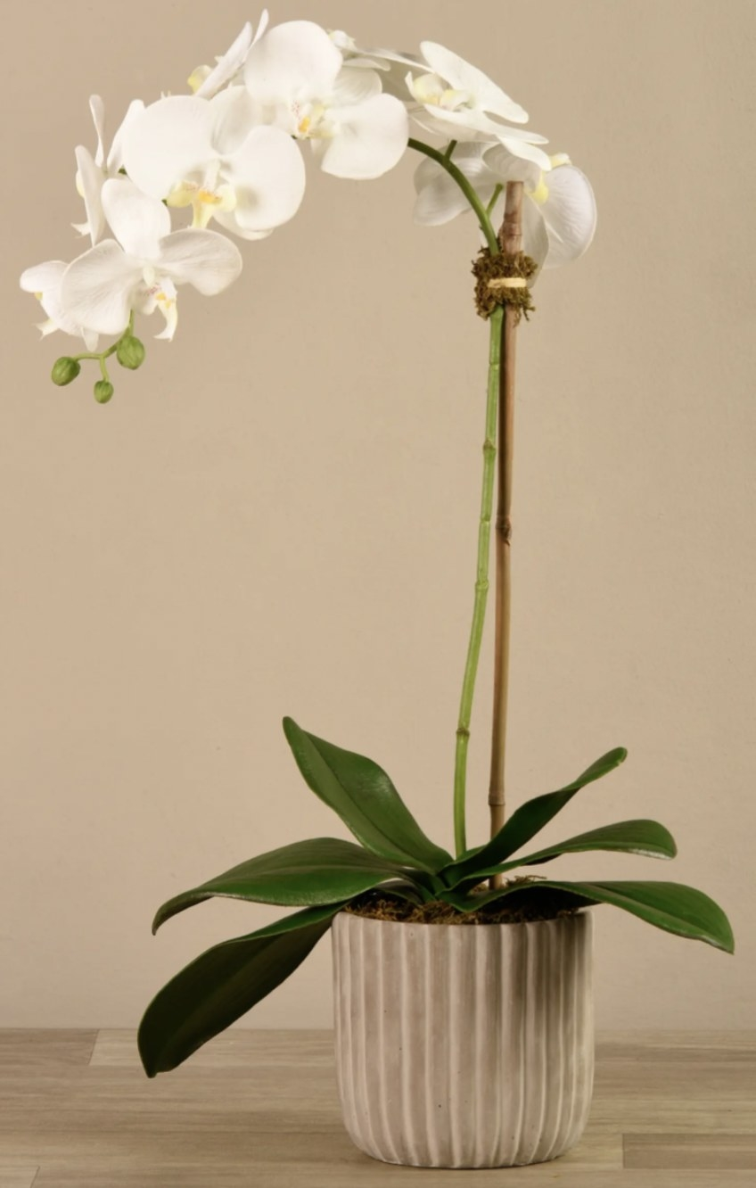 a faux orchid in a grey planter
