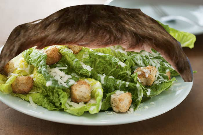 A plate of Caesar salad with bangs photoshopped on top