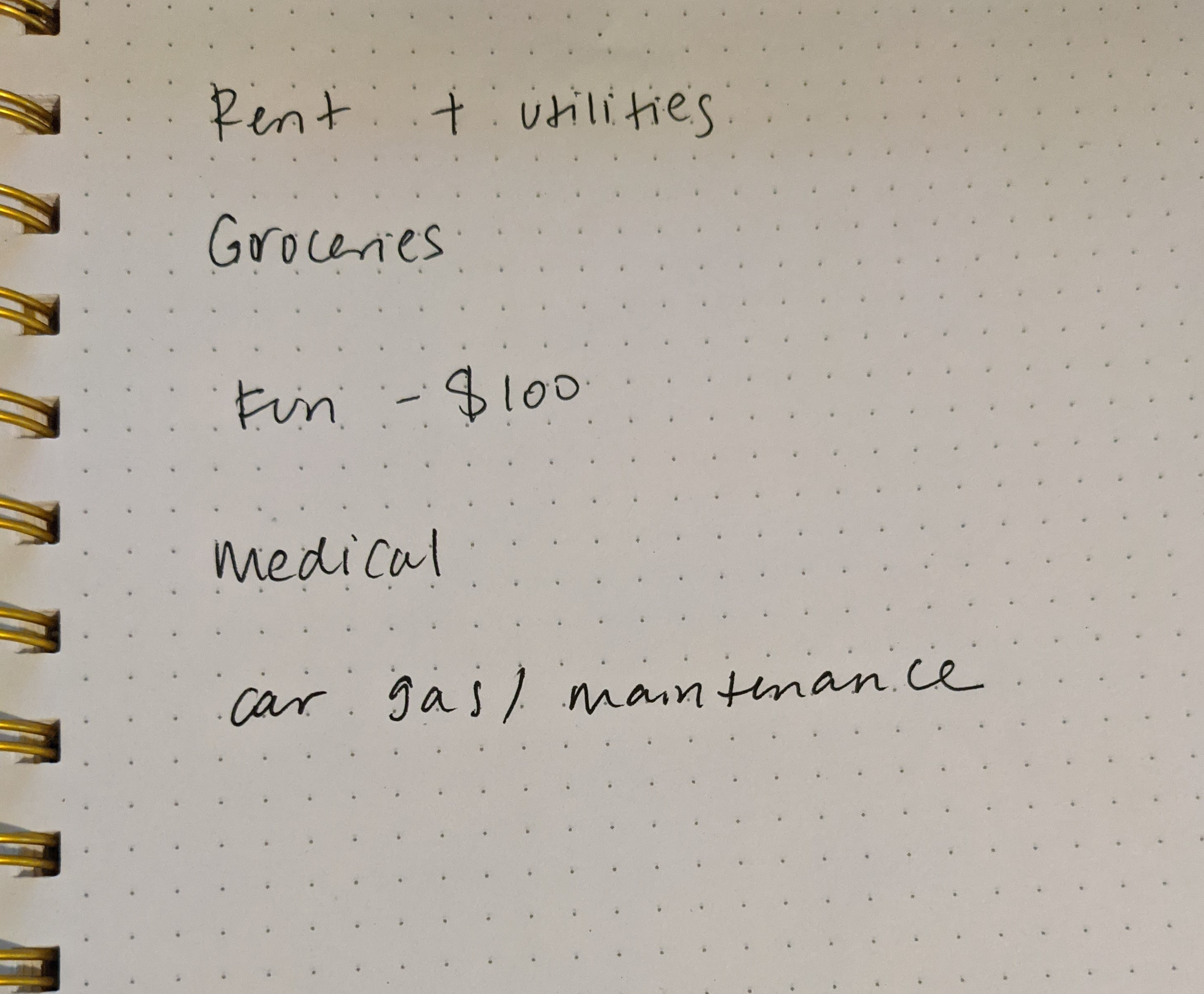 Bare-bones budget listing rent and utilities, groceries, medical, transportation, and a $100 fun budget