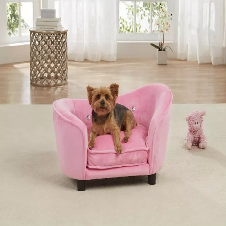 The loveseat in hot pink
